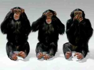 3_monkeys